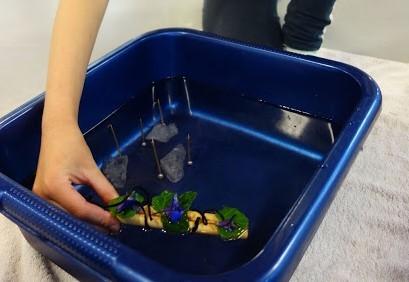Winnaar waterkunst